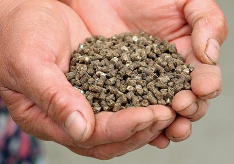 粉末状のアルギットを混ぜてつくられた肥料