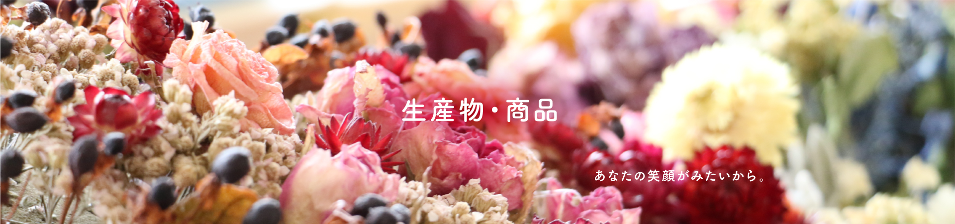 in_products_mv1